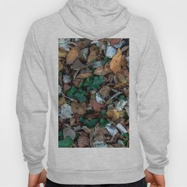 Autumnal leaves bed Hoody