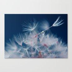 Snow Dandelion Canvas Print