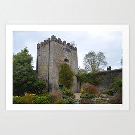 Walled Garden, Malahide Castle Art Print
