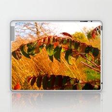 Another Autumn Laptop & iPad Skin