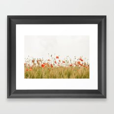 Poppies Coquelicots Framed Art Print