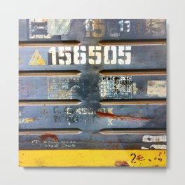 156505 Metal Print