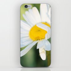 Smiling in the morning light iPhone & iPod Skin