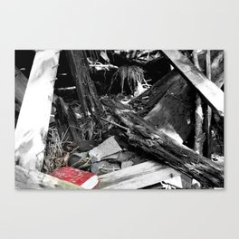 Unlikely Findings Canvas Print
