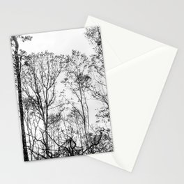 Black and white tree photography - Watercolor series #5 Stationery Cards
