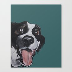 Maeby the border collie mix Canvas Print