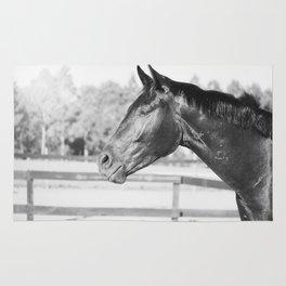 Black & White Stallion Rug
