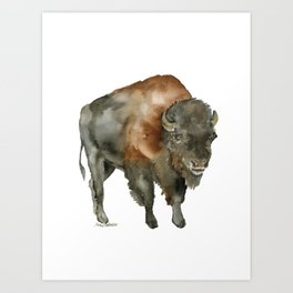 American Bison 2 Watercolor Painting Art Print
