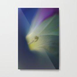 Colors - heart of morning glory dark Metal Print