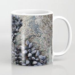 Mussel Bed on Ocean Weathered Rocks Coffee Mug