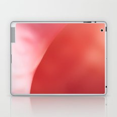 The Pink Shell Laptop & iPad Skin