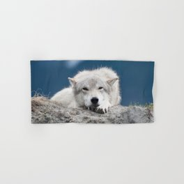 Sleepy Wolf Hand & Bath Towel