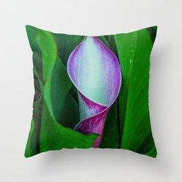 White & Purple Cala Lily Throw Pillow