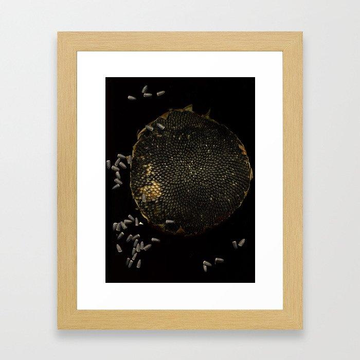 Full Moon Sunflower Framed Art Print