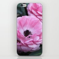 coasters iPhone & iPod Skins featuring The Softest Pink by H. N.
