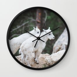 Baby Mountain Goats - Black Hills National Forest Wall Clock