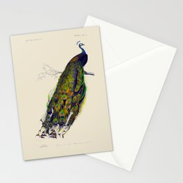 Vintage Peacock Stationery Cards