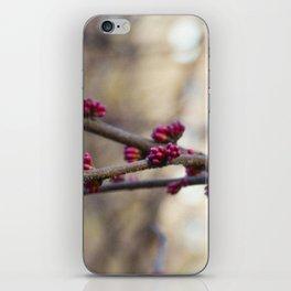 Buds iPhone Skin