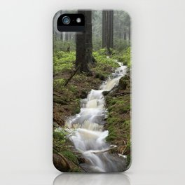 Mountains, forest, rain - water iPhone Case