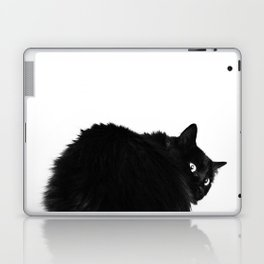 The Hunchback of Catre Dame Laptop & iPad Skin