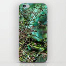 Little Pinecones iPhone Skin