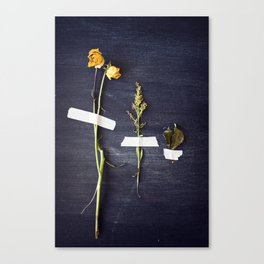 bouquet dissected Canvas Print