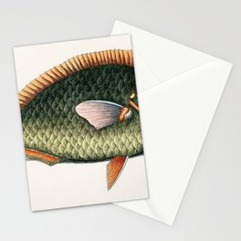 Illustrated Tropical Parrot Fish Game Fish Identification Chart Stationery Cards