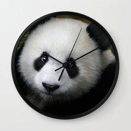 Giant Panda Cub Wall Clock