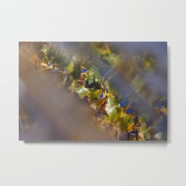 Green cottonwood leaves against blue sky, reflection in water on deck Metal Print