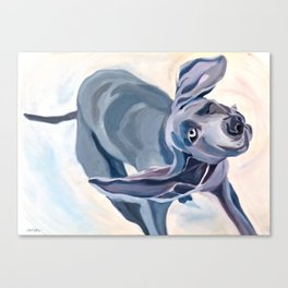 Great Dane Dog Shake Canvas Print