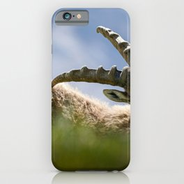 Wild Alp Ibex iPhone Case