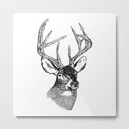 Deer Bust in Black & White Metal Print