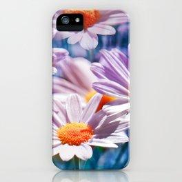 Daisy 33 iPhone Case
