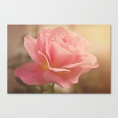 Love is much like a wild rose....... Canvas Print