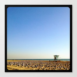 Those are birds. Millions of birds. Canvas Print
