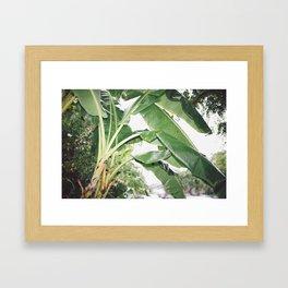Rain in LA Framed Art Print