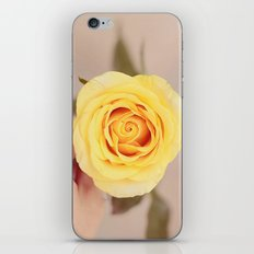 Yellow Rose iPhone & iPod Skin