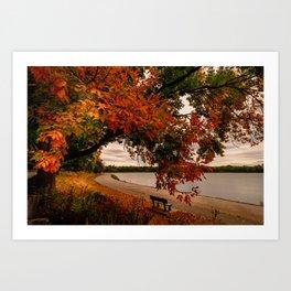September in fall bloom -2 Art Print
