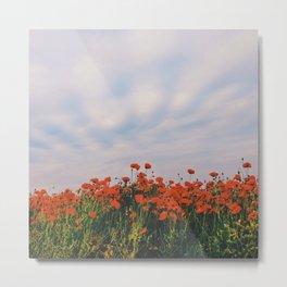 Poppies below clouds. Holme Hale, Norfolk, UK. Metal Print