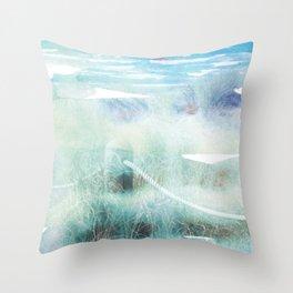 New Zealand Beachscape Throw Pillow