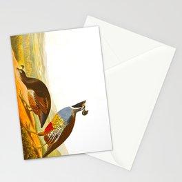 Scientific Bird Illustration Stationery Cards