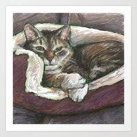 Pet Portrait 1  Art Print