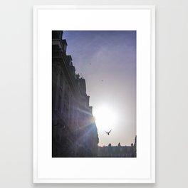 Parisian Flight  Framed Art Print