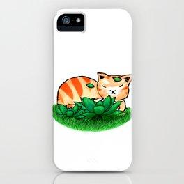 Ginger Sleeping iPhone Case
