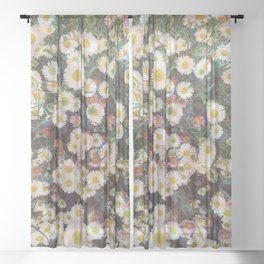 Daisy Garden Sheer Curtain