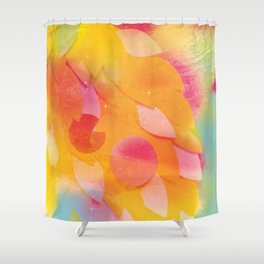 Multiverse Shower Curtain