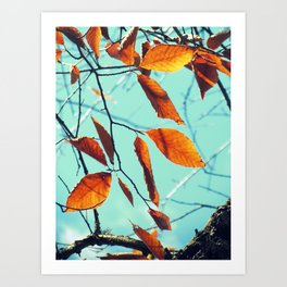 Famous fall 19 Art Print