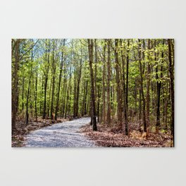 Into the Forest I Must Go!  Canvas Print