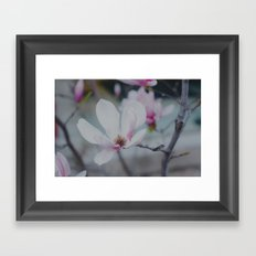 Sweet & Delicate Framed Art Print