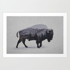 The American Bison Art Print